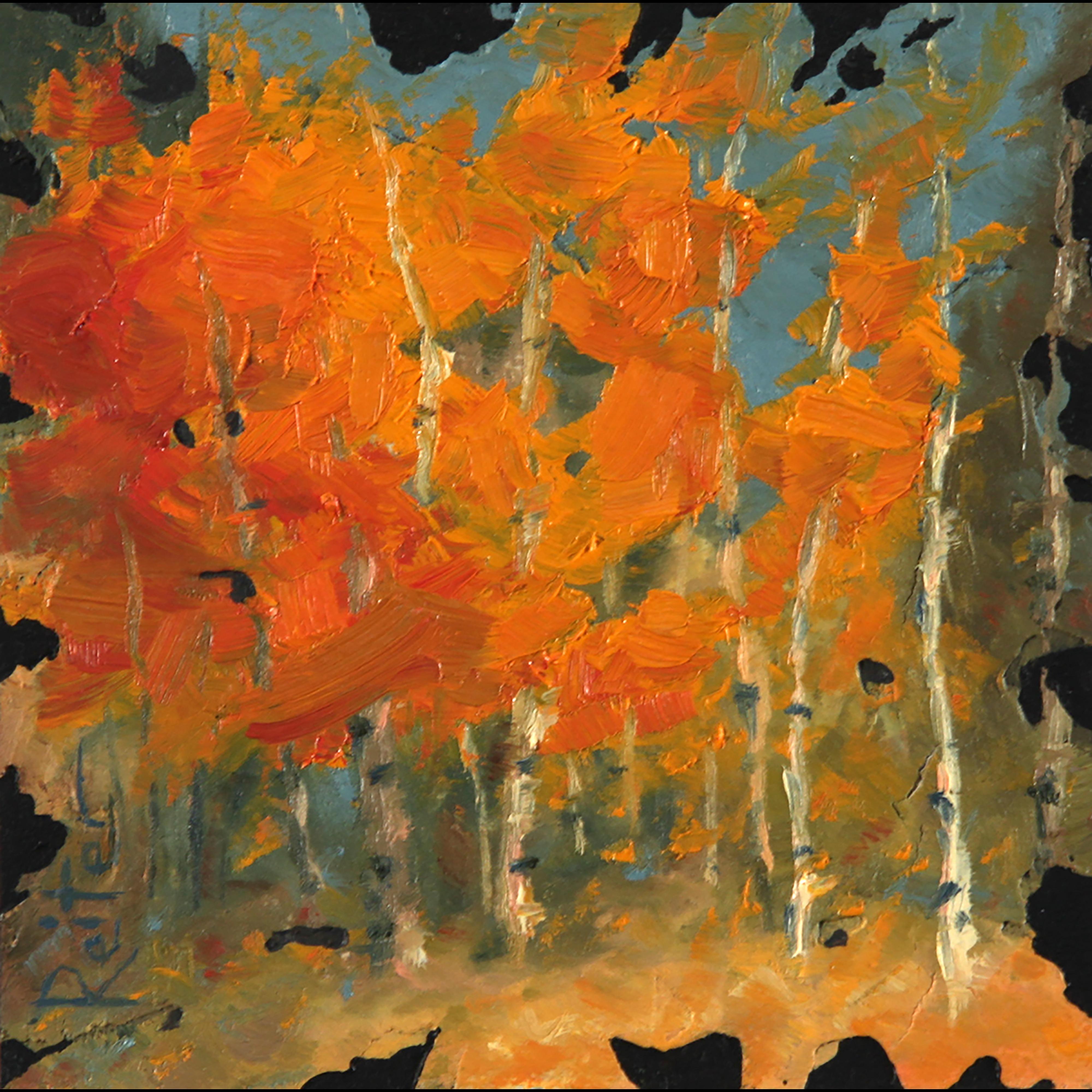 """Autumn Aspens VI"" (6) by Dave Reiter | ArtworkNetwork.com"