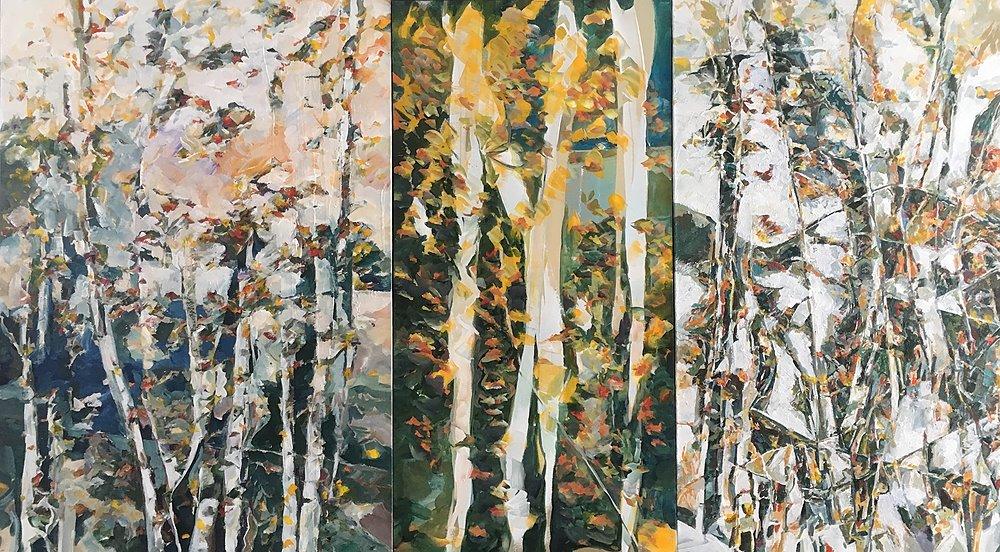 northrim aspen triptych by Kevan Krasnoff | ArtworkNetwork.com