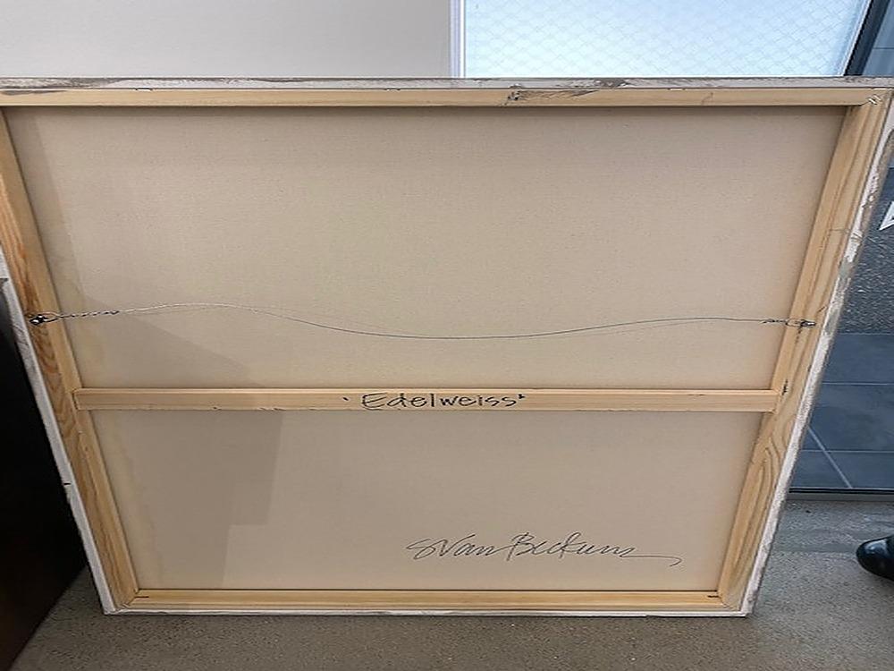 Edelweiss by Sarah Van Beckum | ArtworkNetwork.com